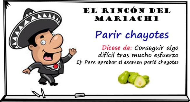 elrincondebueno-chayotes